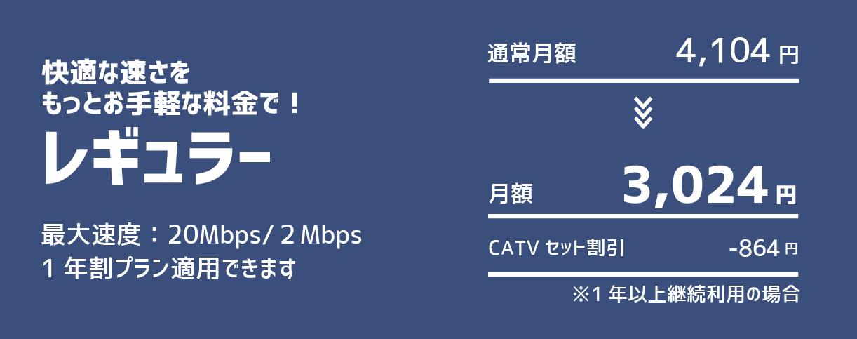 レギュラー:最大速度20Mbps/2Mbps 1年割プラン適用できます 月額3,024円 CATVセット割引-864円 ※1年以上継続利用の場合